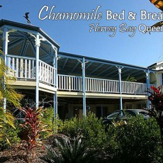 Chamomile Bed and Breakfast
