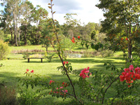 Rosevale House Bed and Breakfast