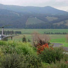 Gracedale-Yarra-Valley.jpg
