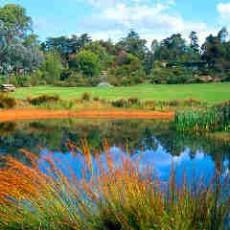 Katandra-Gardens.jpg