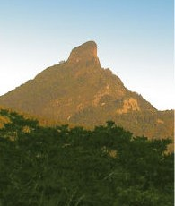 A-View-of-Mt-Warning.jpg
