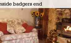 Badgers-End.jpg
