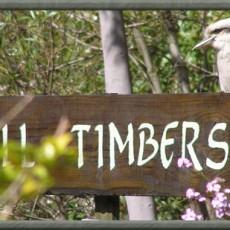 Talls-Timbers-Bush-Getaway.jpg