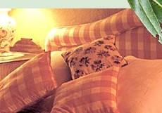 Wildwood-Guesthouse.jpg