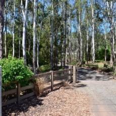 Kookaburra Hill